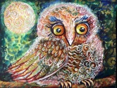 Moonlight and little owl